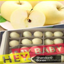 2015fresh Золотое яблоко в Китае с разумной ценой