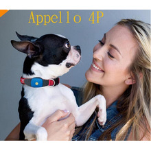 Suivez le logiciel Appello 4p gps pet doger pour Dog Pets Cat
