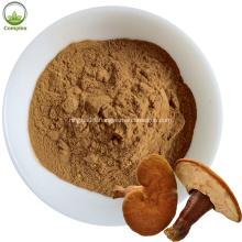 Supply Ganoderma Lucidum Extract Red Reishi Extract