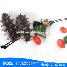 Pepino fresco congelado de la calidad, pepino congelado, pepino de mar para la venta