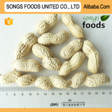 Best Groundnut Price In China