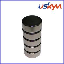 Magnets China Disc NdFeB (D-001)