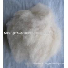 кашемир карты отходов,отходов овечьей шерсти,козьего отходов волос и класс ковер шерсти