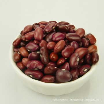 Hight Quality Bulk Canned Small Red Kidney Beans