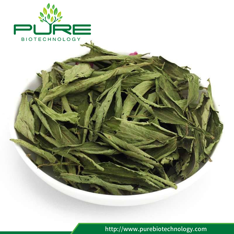 Ningxia Pure Biology Technology Co.,Ltd (PURE Biotechnology) provides a brand-new way for the development and utilization of natural biological activity substances,We provides natural Stevia Leaves Extract Powder.Excellent water-soluble can be guaranteed.And the Stevia Leaves Extrat Powder we have is without any preservatives and additives,its characteristics consist of the high purity and excellent product quality.