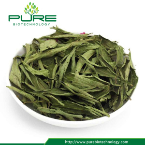 Stevia Leaf Extract Powder / Steviosides
