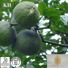 Hohe Qualität 95% ~ 98% Neohesperidin Dihydrochalcon Powder Nhdc Süßstoff