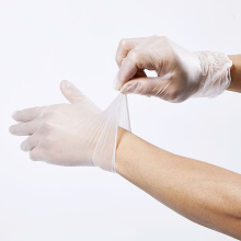 transparent powder free vinyl examination gloves disposable china supplier