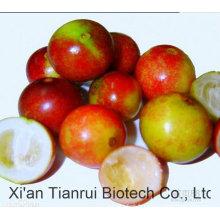 10 tonnes Stock chaud Vente Camu Camu Poudre de fruits / poudre de jus de Camu / Camu Camu Extract Powder