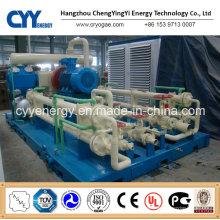 CNG19 Skid-Mounted Lcng CNG LNG Kombi-Tankstelle