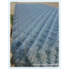 Panneau galvanisé électrique galvanisé de filet de barrière de maillon de fil