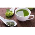 Чай Полифенол 98% экстракт зеленого чая