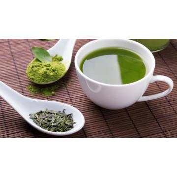 Tea Polyphenol 98% Green Tea Extract