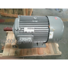 Y Series Motor Three Phase With CE