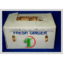 50-250 g de jengibre fresco