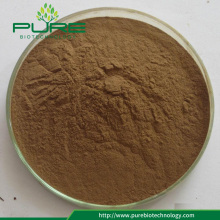 Herbal Extract Liquorice Root Extract/ Licorice P.E.10:1