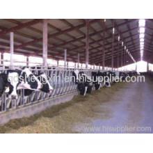 Adjustable Neck Bar Cattle Headlocks