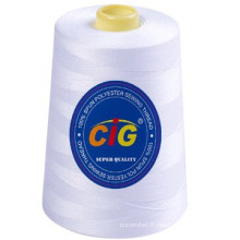 100% Spun Polyester Sewing Thread 30/2