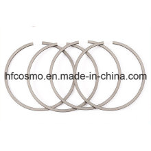 Promotion Various Diesel Engine Using Piston Ring Manufacture