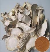 Coprinus Comatus mushroom P.E/Agaricus comatus extract/Chicken Leg Mushroom Extract Powder