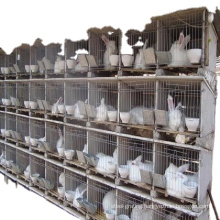 Hot sale easy clean rabbit layer cage for industrial and commercial  with ISO9001