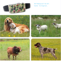 GPS tracking devices for pet /dog GPS smart pet trakcer