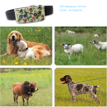 GPS Tracker Dog Cat Pet Collar Waterproof