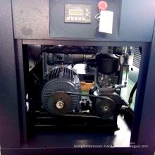 Airstone screw type oil inject air compressor 110v mini oil-less air compressor