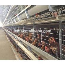 Diseño moderno de granja de pollos para equipamiento avícola automático