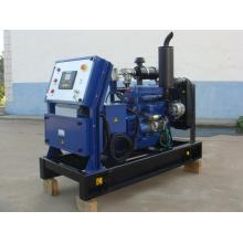 20 years experiences 10KW CNG generator