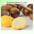 Delicious & Sweet Fresh Raw Chestnut