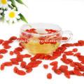 Un type de fruits séchés nutritifs de santé-Baies de Ningxia Goji, fruits Ningxia Red boxthorn, Ningxia Gouqizi santé super fruit