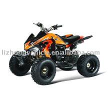 250er Kawasaki style atv