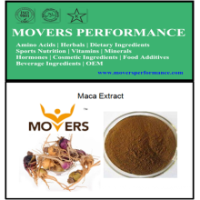 Extrait d'herbes naturelles et biologiques: extrait de maca