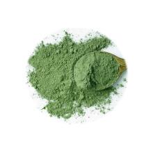 Hochwertiges pflanzliches FD Brokkolipulver in Lebensmittelqualität