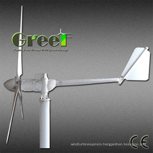 3kw 300rpm Horizontal Axis Wind Turbine with Low Price