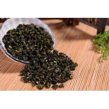 Best export gunpower green tea