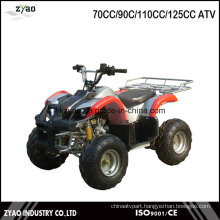 China Manufacturer EPA ATV