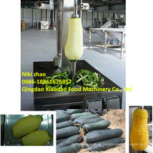 Máquina de remoção de pele de melão e máquina de remoção de pele de melão