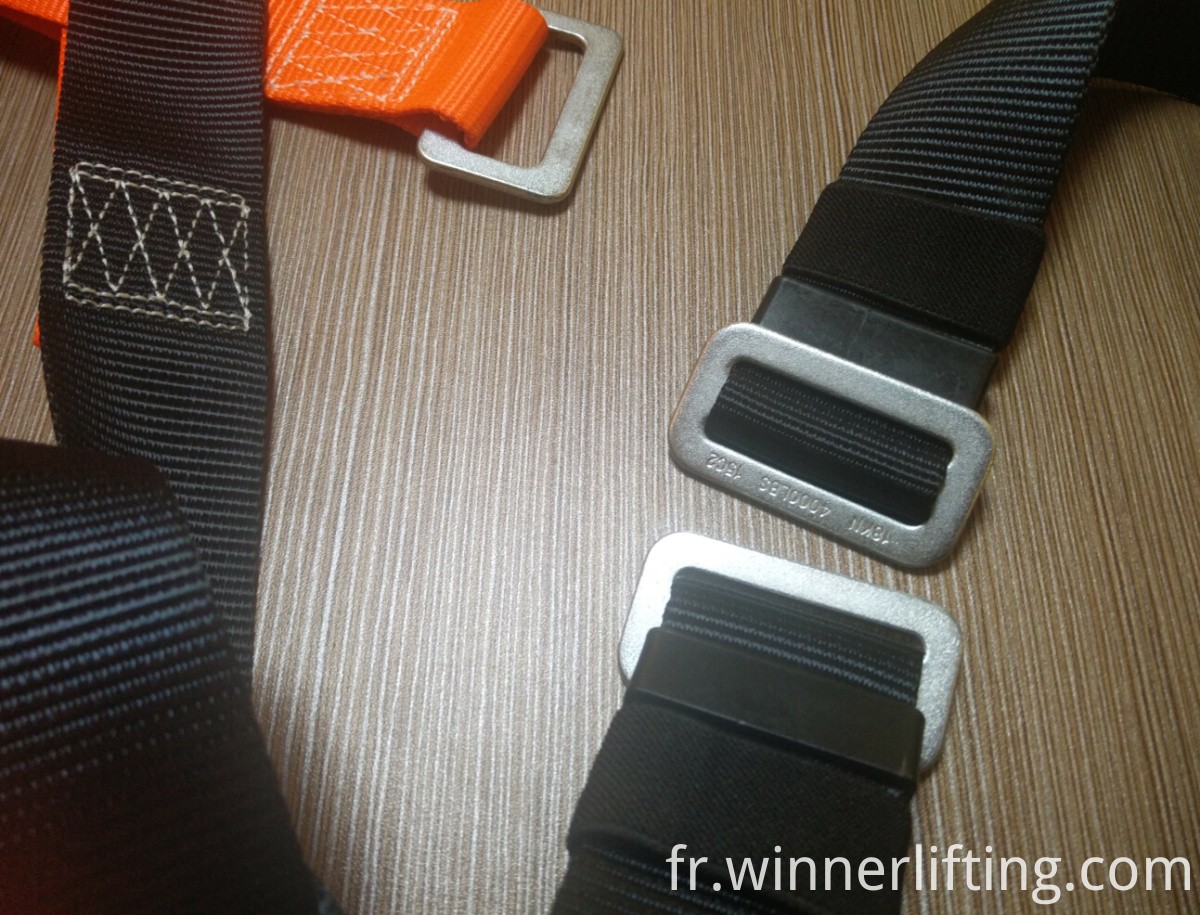 Buckle on Harness