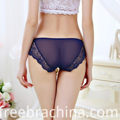 lace brief blue