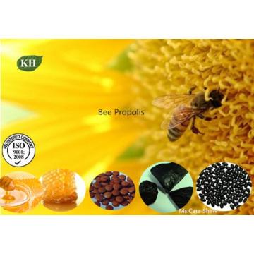 Propolis d'abeille, Colle d'abeille, Extrait de propolis d'abeille, Extrait de propolis purifié