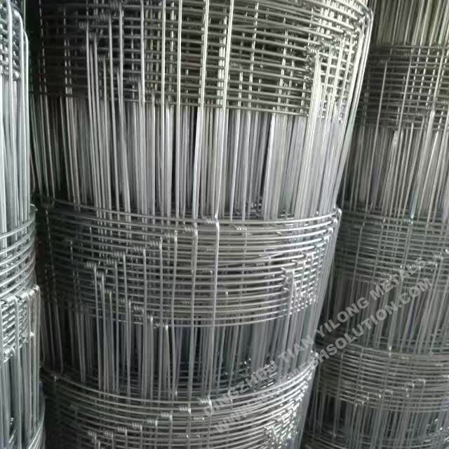 Hot Dipped Galvanized Hinge Knot Field Fence