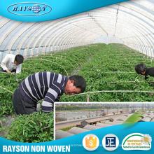 Оптом Купить Из Китая ПП Спанбонда Сырье Сельскохозяйственных Теплиц Ткань
