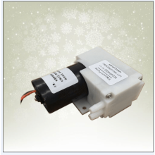 Brushless dc 12V generator pressure vacuum pump