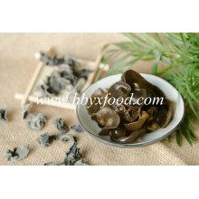 Fungo secado fonte do fabricante, alimento secado / fungo preto
