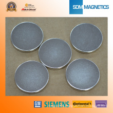 Ni Plated High Quality Magnet