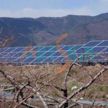 Système d'énergie solaire avec support solaire à vis au sol