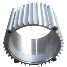 OEM Aluminium Casting Motor Shell Gehäuse