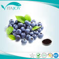 Bilberry Extract 25% Anthocyanidin